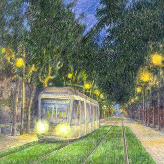 Els transports públics